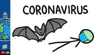 Por que os morcegos transmitem tantas doenças? | Minuto da Terra