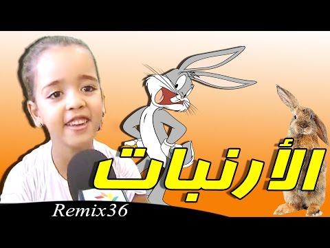 روميكس الأرنبات - Remix 36
