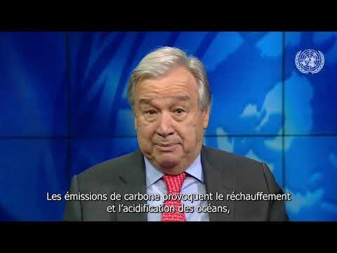 Video : Message du SG de l'ONU à l'occasion de journée mondiale de l'océan