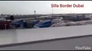 Silla border dubai width=