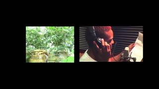 KONSHENS Aurora Innovations DJ Crown Roots Organics plant somthing