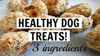 3 INGREDIENT HEALTHY DELICIOUS DOG TREATS! (vegan)