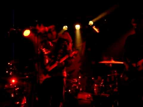 timid-tiger-miss-murray-live-in-hamburg-23092008-belle-brummell