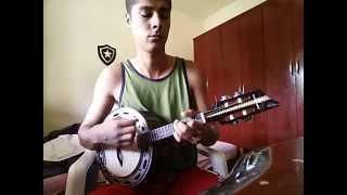 SOM BRASILEIRO - Revelação ( Banjo )