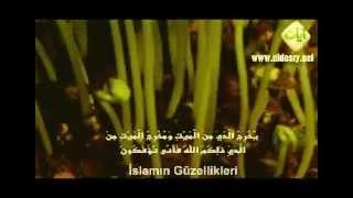 Yasser Al Dosari 2012 - Muhteşem Tilavet