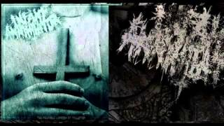 Infant Annihilator(Feat:Lucas Mann) - Flayed And Consumed(New Song 2012)