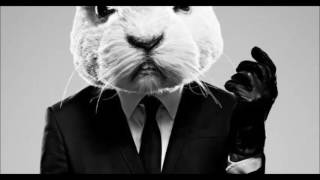White rabbit - S-o-l-o-m-u-n mix