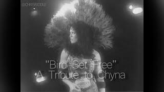 Bird Set Free: A Tribute to Chyna