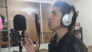 Mi querido mi viejo mi amigo - Roberto Carlos Cover (Fernando Navarro)