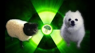 Imagine Doggos - Radioactive