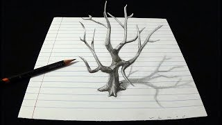 Dead Tree Drawing on Line Paper - How to Draw a Tree - 3D Trick Art by Vamos