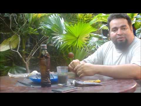Alegria Nicaraguense