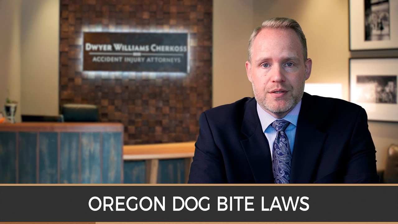 Best Dog Bite Attorney Syracuse NY