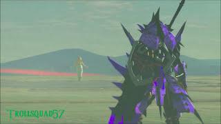 Zelda Is The Final Boss?
