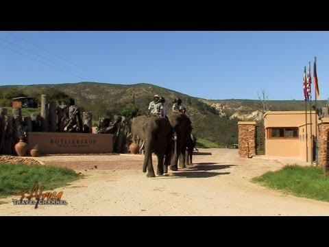 Botlierskop Private Game Reserve Mossel Bay Garden Route South Africa – Africa Travel Channel
