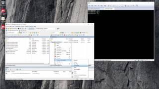 Configuring Delphi for Linux Deployment