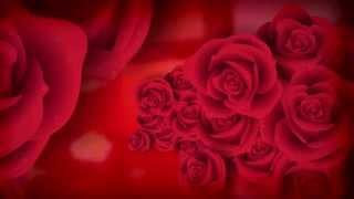 Jorge e Mateus - Flor - [DVD Ao Vivo em Jurerê] - (Áudio Oficial)