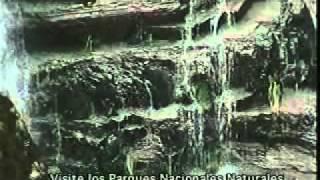 Espumas-Silva y Villalba en parques Nales de Col.wmv