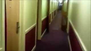 Agaric - Ebisu Interlude - VIDEO