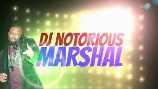DJ NOTORIOUS MARSHAL BIRTHDAY PARTY TENEMOS EL PLACER INVITARLES By: Andy Omoregie