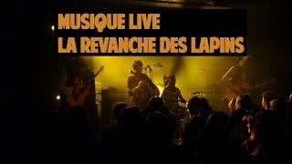 Grand Canard Blanc - La revanche des lapins - Live à l'Amalgame