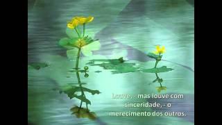 Desobsessão - André Luiz - Chico Xavier