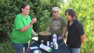 Create a Team of Cannabis Experts: Introducing Cannabis Training for Teams