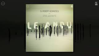 DJ Robert Georgescu  X  Steel and White - Le Andu ( Official Audio )