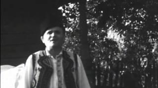 Dumitru Bălășoiu - Foae verde spic de grâu