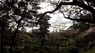 千本桜 - Senbonzakura in Japan, 2015 (Lindsey Stirling)