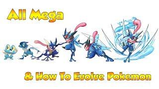 How To Evolve Pokémon   Generation 6 Kalos & Mega Evolutions (Animated Sprites)