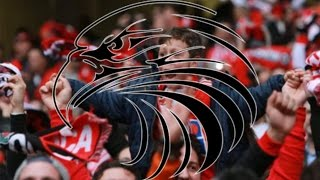 Sport Lisboa e Benfica - Juntos somos mais fortes - Diogo Dias