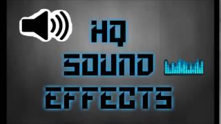 CAMERA SHUTTER SOUND EFFECT HQ