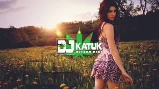 Akon - I'm So Paid (Dj Katuk Reggae Remix 2017)