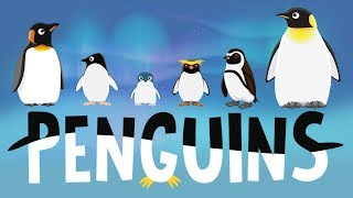 Penguins for Kids: Penguins for Kids: Interesting Facts - Different Types of Penguins