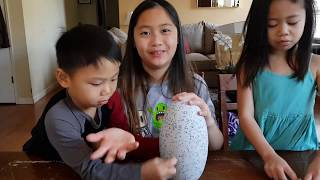 Hatchimals SURPRISE Special Edition  MAKING SOUNDS Update 2