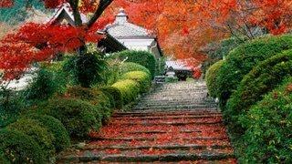 Relax Music, Japanese - Musica Rilassante - Relajación Música Japonesa - Musica Giapponese - Zen