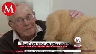 """""""Biscuit"""",el perro robot que ayuda a ancianos"""