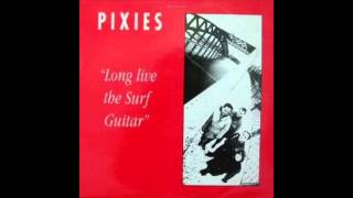 Pixies - Into The White (Live at Gloucester Leisure Centre)