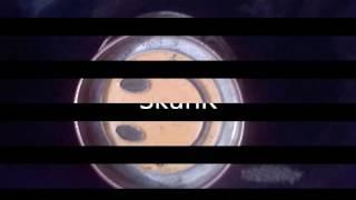 SkunK-Trecut, viitor,prezent