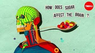 Hoe suiker je hersenen beïnvloeden