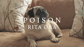 """Poison"" (Rita Ora Cover) // The Queen and King"
