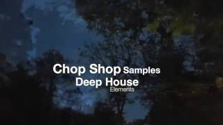 Deep House Elements - Stabs & Chords Demo