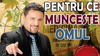 Nicu Paleru - Pentru ce munceste omul (muzica de petrecere 2015)