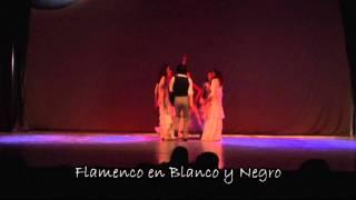 Flamenco en Blanco y Negro 2011.mpg