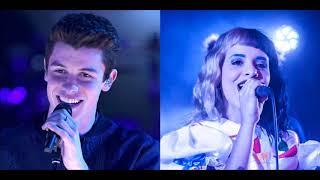 There's No Dollhouse Holdin' Me Back (Mashup) - Shawn Mendes & Melanie Martinez