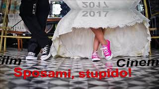 Sposami, stupido! (film)