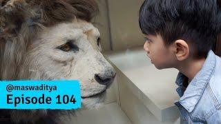 Mengunjungi Natural History Museum, London - Part 1