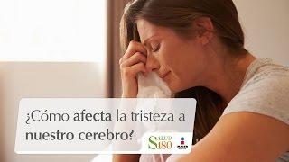 ¿Cómo afecta la tristeza a nuestro cerebro?   Cortos por S180