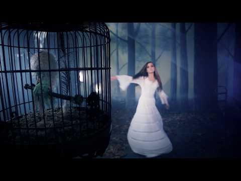 stevie-nicks-secret-love-official-music-video-stevie-nicks